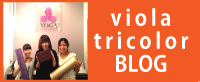 ヴィオラのブログ